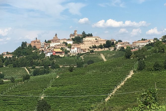 Barbaresco Wine Experience