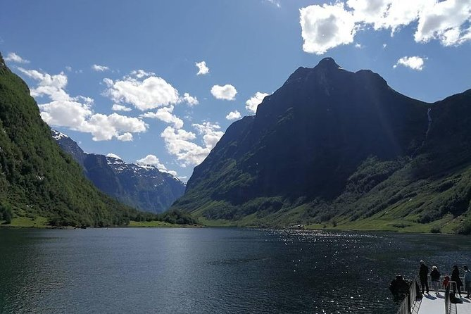 Private day tour to Flam - incl Premium Nærøyfjord Cruise and Flåm Railway