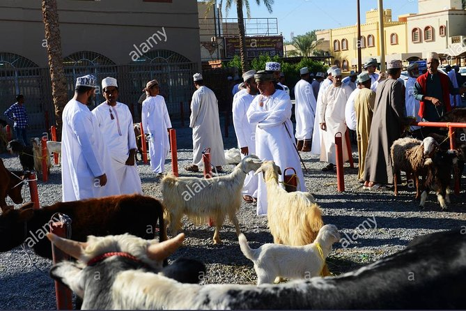 Nizwa Friday Market Jabal Chams