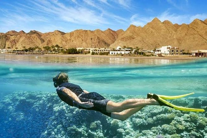From Hurghada: Giftun Islands Full-Day Snorkeling Tour photo 2