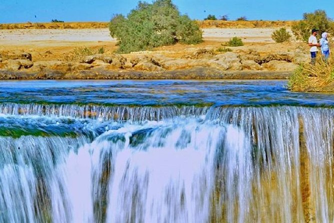 Full-Day Trip to Fayoum with Guide