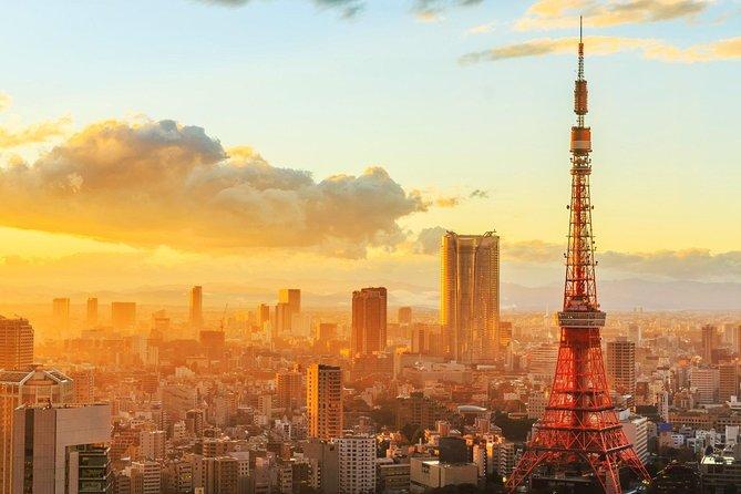 Japan Tokyo: Private Airport Transfer from Tokyo City to Narita Airport(NRT)