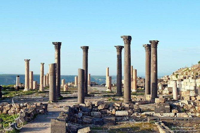 Jerash, Ajloun and Umm Qais One Day Tour From Amman