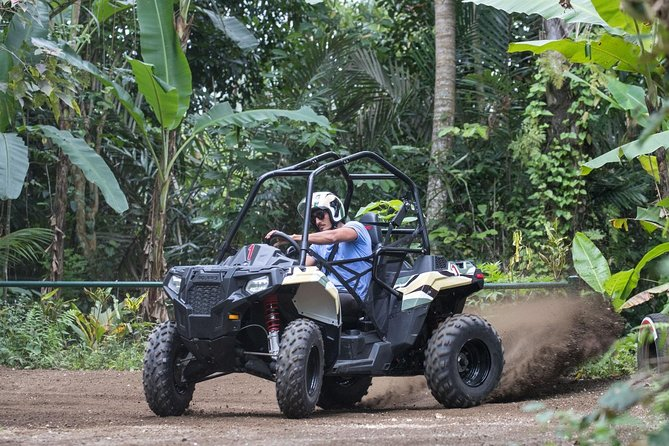 Half Day Jungle Buggies in Bali with Guide