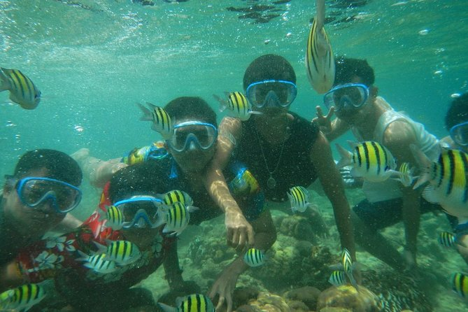 Bali Best SNORKELING at BLUE LAGOON and EAST BALI TOURS