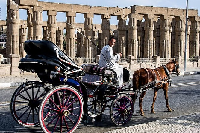 Luxor City Tour By Horse Carriage From West Bank