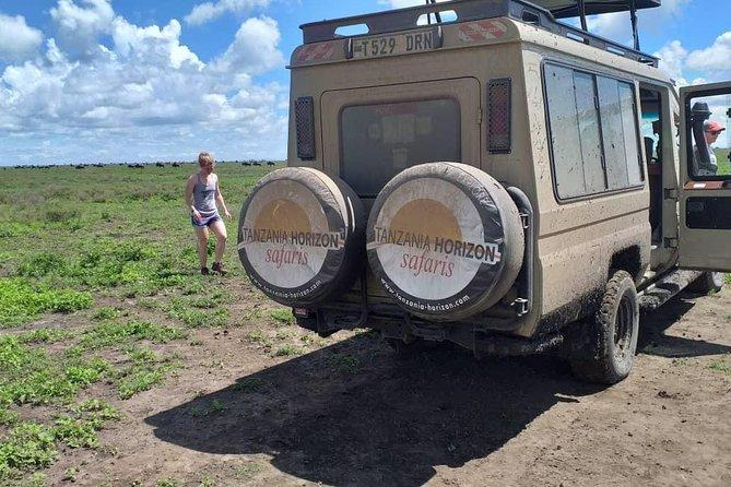 7 Day Lodge Safari - Lake Manyara, Tarangire, Serengeti, Ngorongoro Crater