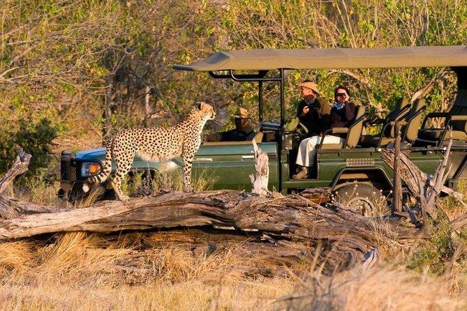 2-Day Wildlife Safari Adventure in Rwanda (Akagera Park)