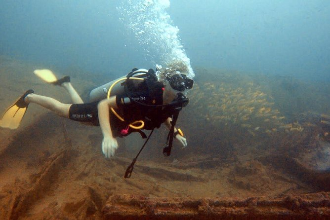 Fun Dives For Certified Divers photo 1