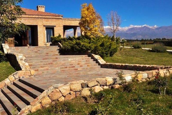 Half day wine tour. Visit 2 wineries in Lujan de Cuyo