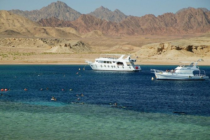 Ras Mohammed National Park and White Island Full Day Tour with Pickup