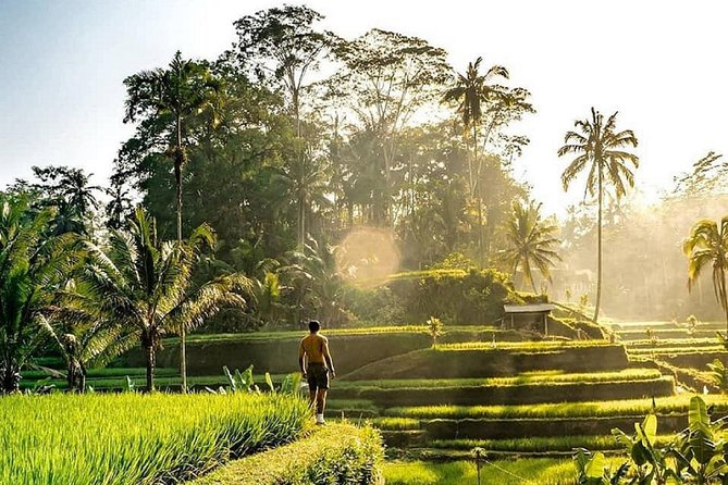 Best of Ubud -Monkey forest -Jungle swing -Water Temple -Waterfall - FREE WI-FI