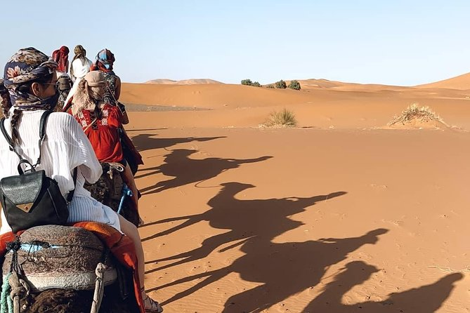 2 days/1 night Desert tour from Fes and back to Fes