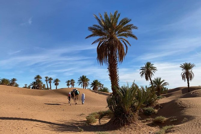 3-day trek - In the shade of palm trees