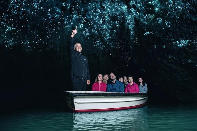 Waitomo Glowworms Caves Small Group Adventure from Auckland