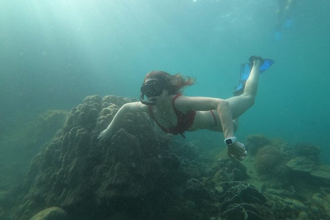 Private Snorkeling Trip - Discover Half - moon Reef and Enjoy sunset on Island