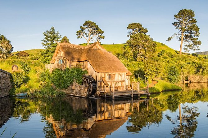 Waitomo Caves & Hobbiton Small Group Tour from Auckland