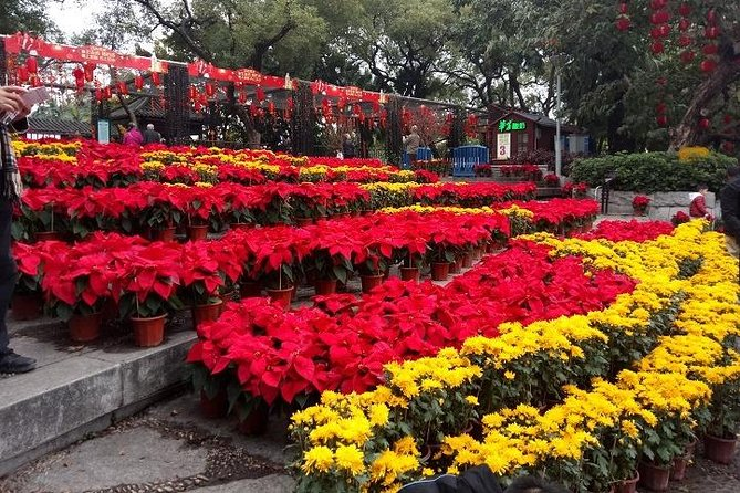 Private Historical Tour: Guangzhou City Sightseeing With Lunch