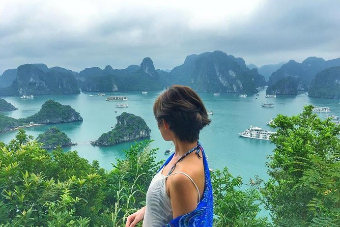 Ha Long Bay Day Cruise With Express Bus, Amazing Cave, Titop Island