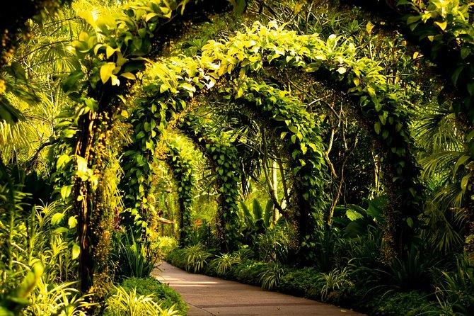 Botanical Gardens Flower and Foliage Photography