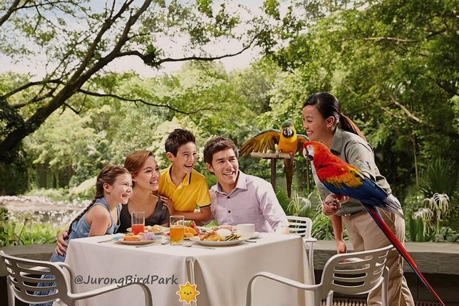Dine with Parrots photo 1