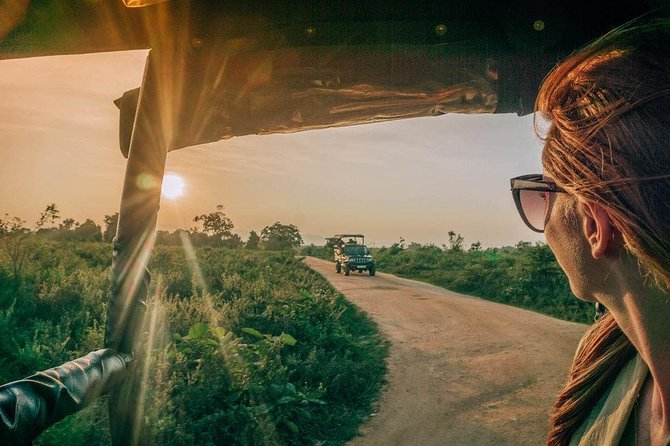 Afternoon Wilpattu National Park Private Safari