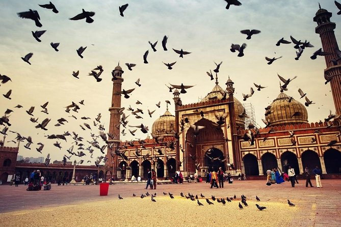 Old Delhi Walk And Red Fort Half Day Tour