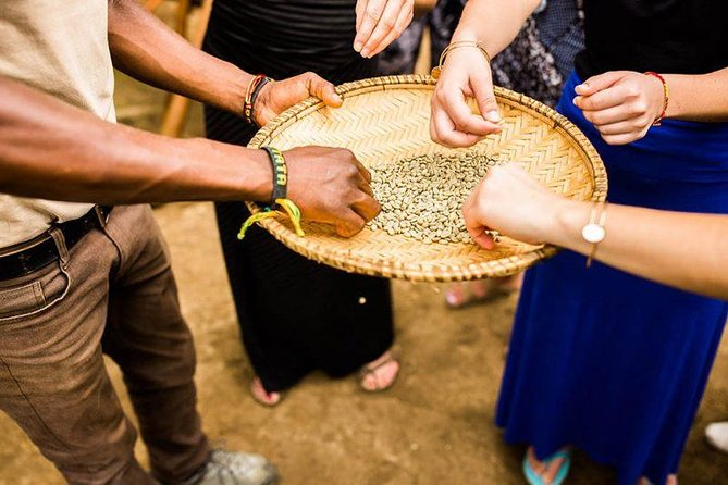 Coffee Tour Experience from Arusha