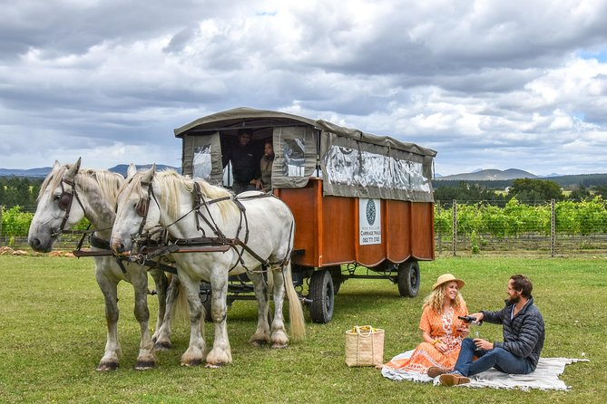 2 Hour Horse Drawn Carriage Wine Tasting & Lunch Trail