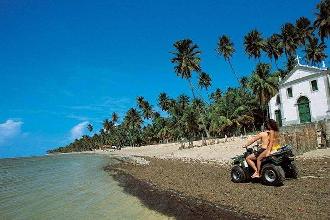 PORTO DE GALINHAS: Excursão à Praia dos Carneiros // Com Transporte + Guia