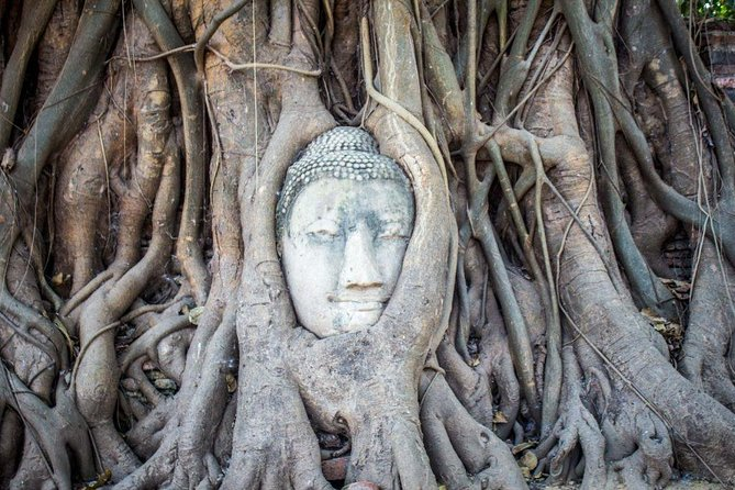 Private Tour : Ayutthaya Historical Park from Bangkok 1 Day Trip