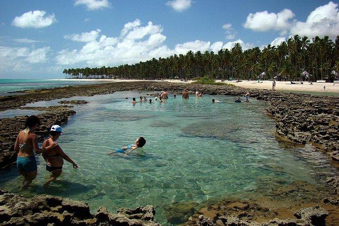 PORTO DE GALINHAS - Descubra a Praia do Gravatá // Com Transporte + Guia