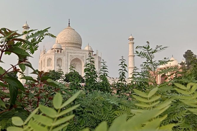 Agra Same Day Trip from Delhi with Air conditioned Vehicle and Guide Services photo 2