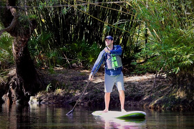 SUP Paddleboard Rentals and Tours