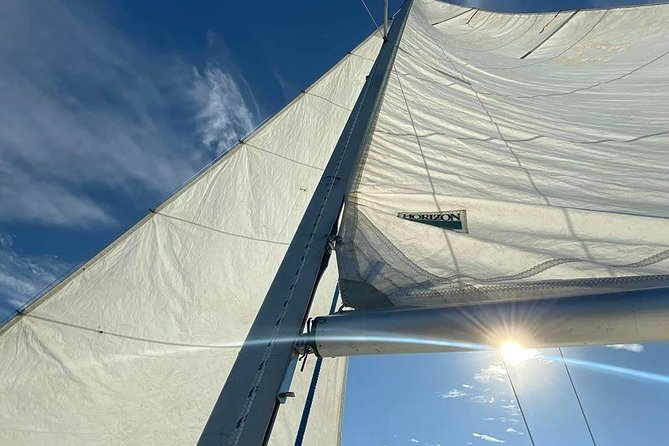 Day Sailing Experience
