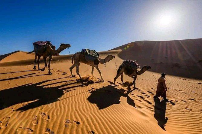 Shared 3 Day Desert Safari Experience tour from Marrakech to Merzouga