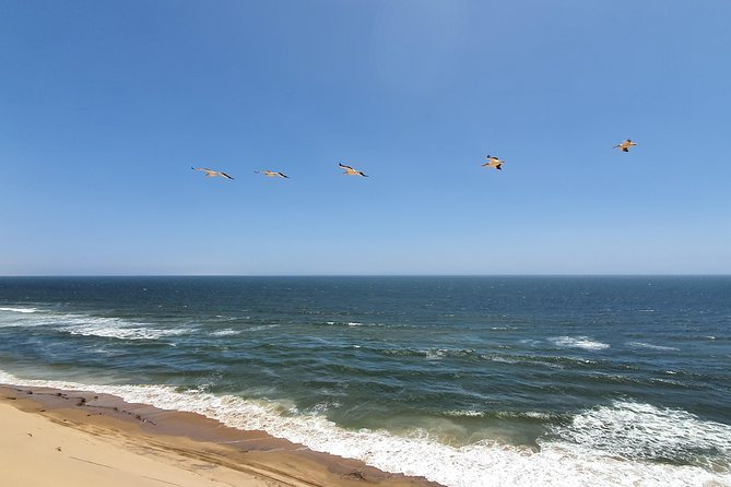 Private Full-Day Tour Walvis Bay and Swakopmund with Pick Up