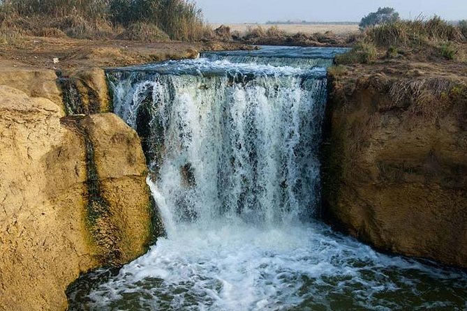 Best of El Fayoum ,Valley of the Whales and Wadi El Rayan Private Day Tour