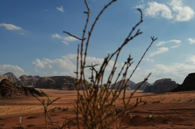 Wadi Rum Private tour from Amman (1 Day) photo 24