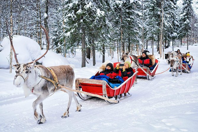 Ultra - Rovaniemi Private Airport Transfer - City Centre to Rovaniemi Airport