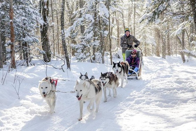 Mont Lac-Beauport Dog sledding or Ice fishing or Snowmobiling, your choice!