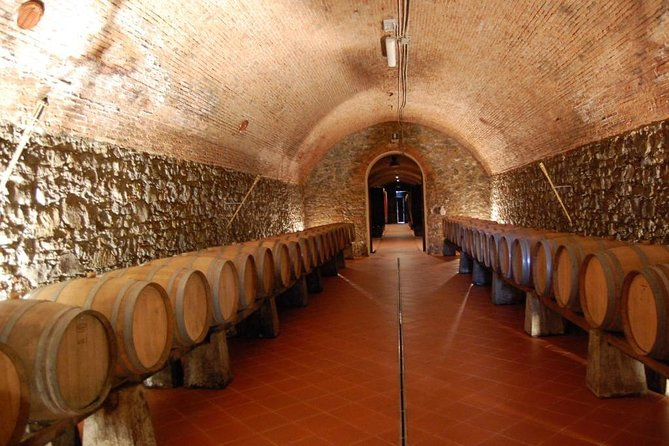 Discover all flavour of Pistoia thru a wine tasting at Casalbosco Estate