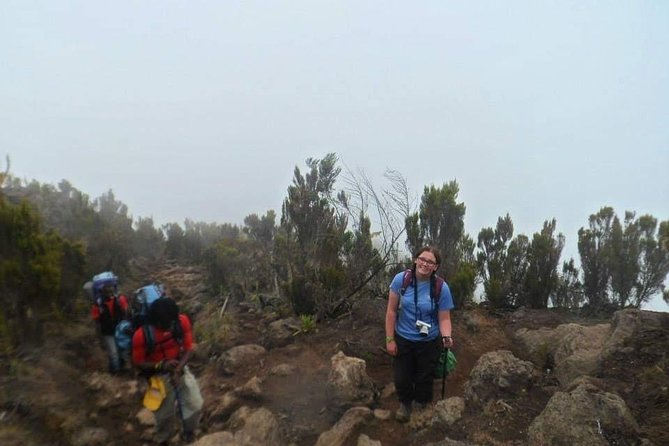 Mount Kilimanjaro Hiking Via Marangu Route. photo 14