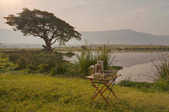 4 Days Tanzania Serengeti, Ngorongoro.