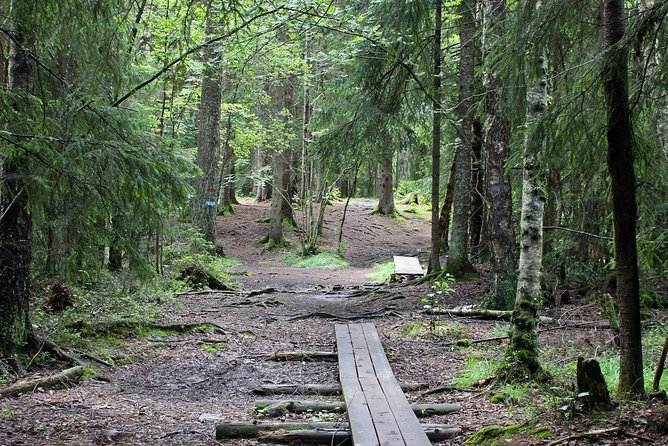 Oslo Hiking - Geographic centre of Oslo walk