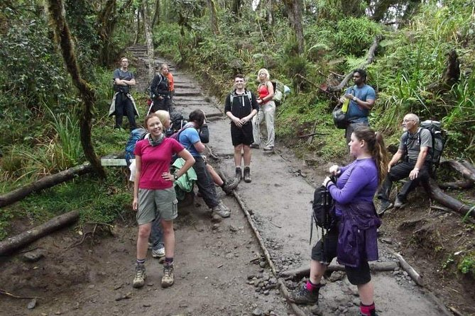 Mount Kilimanjaro Hiking Via Marangu Route. photo 8