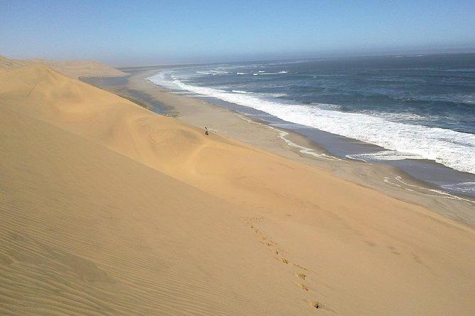 Coastal Tours