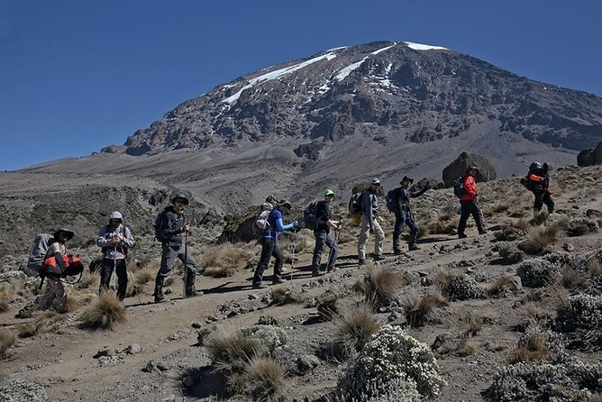 5 Days Marangu Route climbing Kilimanjaro the coca-cola Route the easy Route