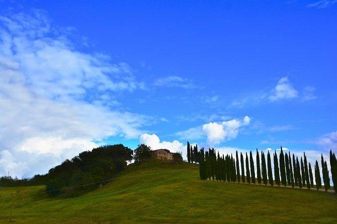 Montalcino and Brunello Wine Private Tour