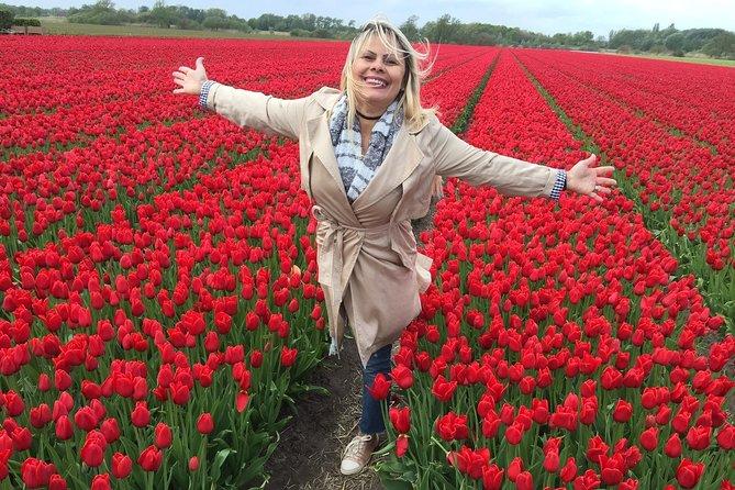Tulips Flowerfields + Zaanse Schans Windmills + Volendam + Marken + Edam